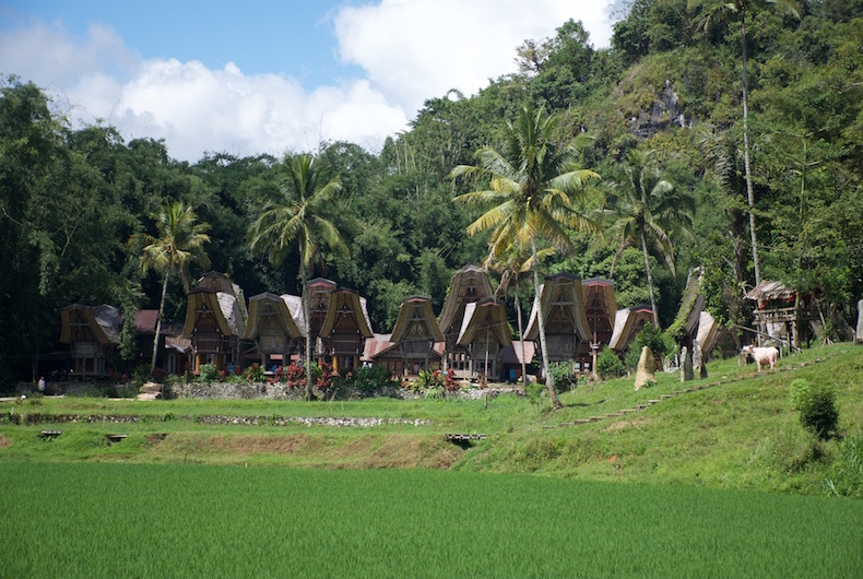 The Toraja and their funeral customs